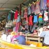 タイ⑬ 【ベルトラ】ダムヌンサドゥアク水上マーケットとニシキヘビの肩乗せ体験