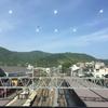 愛宕山に登ろう
