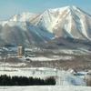 今年の北海道は春が早すぎた。