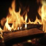 【だから実写はダメなんだと】魔法少女まどかマギカが予想通りに大炎上