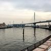 中川を歩く 東京湾河口から高砂・新中川分派まで