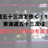 【東海道五十三次を歩く!12日目】東海道五十三次は誇張されてるものもある!