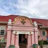 ピンクの博物館とヘビ山とコウモリと(週末ラーチャブリー紀行)