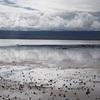 茶卡塩湖(チャーカー塩湖)の景色-天空の鏡。中国西北一網打尽旅行(17)