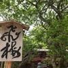 【福岡】柳川・大宰府で中山大藤とつつじを楽しむ1日