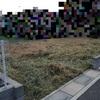 注文住宅で家を建てる!【3】〜土地の雑草処理はどこがしてくれるもの?〜