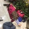 フライトキャンセルによる三日間のカオスな空港生活 @マニラ空港第3ターミナル