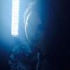 Fawkesによるインダストリアルなポスト・ウィッチハウスなミックステープ『Death Is The Goddess』