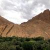 トドラ渓谷、サハラ砂漠の入り口にやって来ました