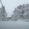 スノーブレードはココがすごい!夏用ワイパーと冬用ワイパーは何が違うの?