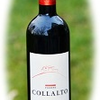 Podere Collalto 2011 トスカーナの赤ワイン
