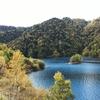 紅葉の定山渓へ♪小樽に寄り道プチ温泉旅行