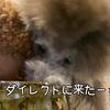2021.5.27 【肉は我慢出来ない‼️】 Uno1ワンチャンネル宇野樹より