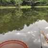 両グルテンの夏の釣り