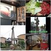 日本の原風景を堪能できる『飛騨』は、四季折々の美しさが迎えてくれる ❢
