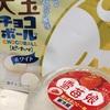 【日記】平成最後の晩餐の話と動物病院の話