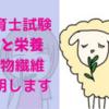 食物繊維をざっくり解説【保育士試験・子どもの食と栄養】