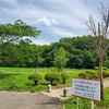 鹿嶋池公園と旧鹿嶋神社