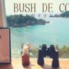 すさみのBUSH DE COFFEEに行ってきた〜絶景の海辺カフェ〜