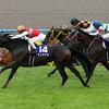 2018年秋華賞 GⅠ アーモンドアイ完勝!大外一気で史上5頭目の牝馬3冠達成にルメール「日本で一番強い馬」