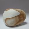 糸魚川紋様石vol.28「亀石 石まるごとの亀」奇石という奇跡