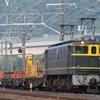 第529列車 「 新下関工臨の返空を狙う 」