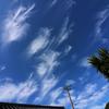 気高き巻雲の日