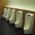 【驚愕の事実】トイレで隣に人がいると出なくなる…それはれっきとした病気だった!?
