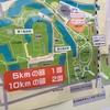 走ったので 【速報】大阪城ナイトラン10km〜赤アフロに感謝!