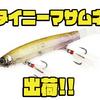 【カエス】前回即完のI字系ナチュラルベイト「タイニーマサムネ」出荷!