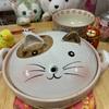 猫型土鍋!!養命酒製造の赤養鍋!!
