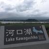 珍しく自転車に乗らない遠出で、箱根ガラスの森美術館・河口湖・さくらんぼ狩り