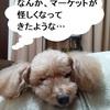 【あさイチの株の素】経済指標良好でダウだけ反発、東京は先週末の重たさが気にかかる