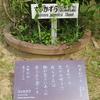 万葉歌碑を訪ねて(その1101)―奈良市春日野町 春日大社神苑萬葉植物園(61)―万葉集 巻一 一〇二