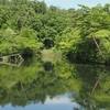 金沢調整池の下の池(仮称)(福島県郡山)