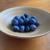 ブルーベリーの収穫はヒヨドリと競争です