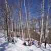 森のお遊び会 3月雪上アスレチック 進級カレーパーティー