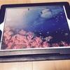 iPadをそろそろ新調したい!