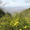弘法山・念仏山
