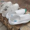 大きいサイズの靴の探し方 幅広と偏平足