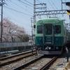 京阪宇治線2600系、最後の桜?