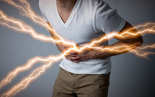 痛みを感じる神経細胞は、大部分が同じ刺激に特化している