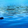 鳴子温泉周辺のインスタ映えスポット『潟沼&内沼』に行ってきました