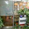 鹿児島市天文館の「珈琲族」でウインナーコーヒー、「オハナキッチン」でマカダミアナッツパンケーキ。