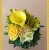 【無痛分娩体験記13】東京マザーズクリニックからのプレゼント