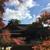 【京都大好き人間】穴場!!な秋の京都の名所ベスト3を紹介