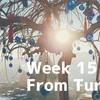 【15週目】エキゾチックで神秘的な国トルコで感じたこと
