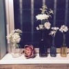 種類豊富です。セリアの瓶&造花。
