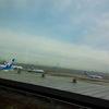 美瑛雪景色と旭山動物園の旅 千歳空港の事故と雪でちょい遅れる 旭川まで