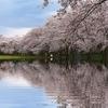 画像加工で、ウユニ塩湖っぽく水に反射する写真をつくる。